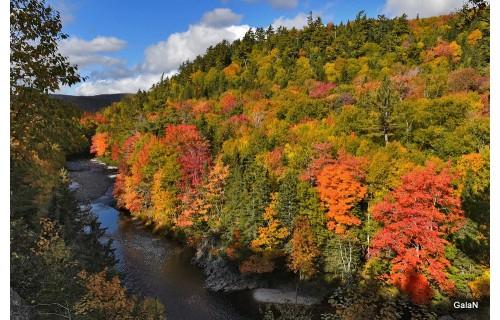 Багряные клены – национальные символы страны – и золотые дубы, желтые осины и вечно зеленые ели не шелохнувшись стоят на фоне гор с заснеженными вершинами и отражаются в зеркальной глади озер и заливов.  Клен – символ Канады – приобретает багряный цвет. Б<p>5 790 $</p>