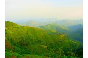 Путешествие белой обезьяны. День семнадцатый. (Эфиопия). Лангано. Возвращение.
