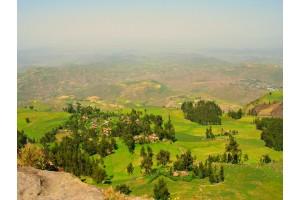 Путешествие белой обезьяны (Эфиопия). Эпилог.