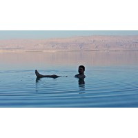 День отдыха на Мертвом море + обед