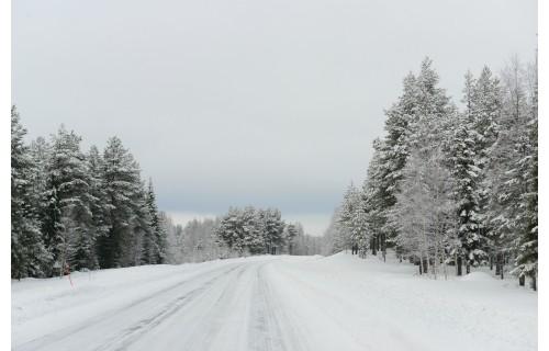 Эксклюзивное путешествие в край дикой природы и северного сияния!  Тур в Лапландию из Израиля на русском языке. <p>2 024 €</p>