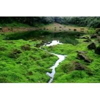Филиппины - тропический рай. Офир турс
