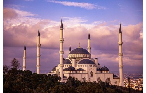 Никто не может оставаться равнодушным к Стамбулу!  город построен на 7 холмах ,и великолепный пролив  Босфора,разделяет его на азиатскую и европейские части, бухта Золотой Рог - делают город  уникальным и единственным!<p>995 €</p>