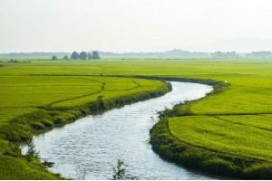 В разноцветьи Азии. Солнечный Вьетнам и древняя Камбоджа